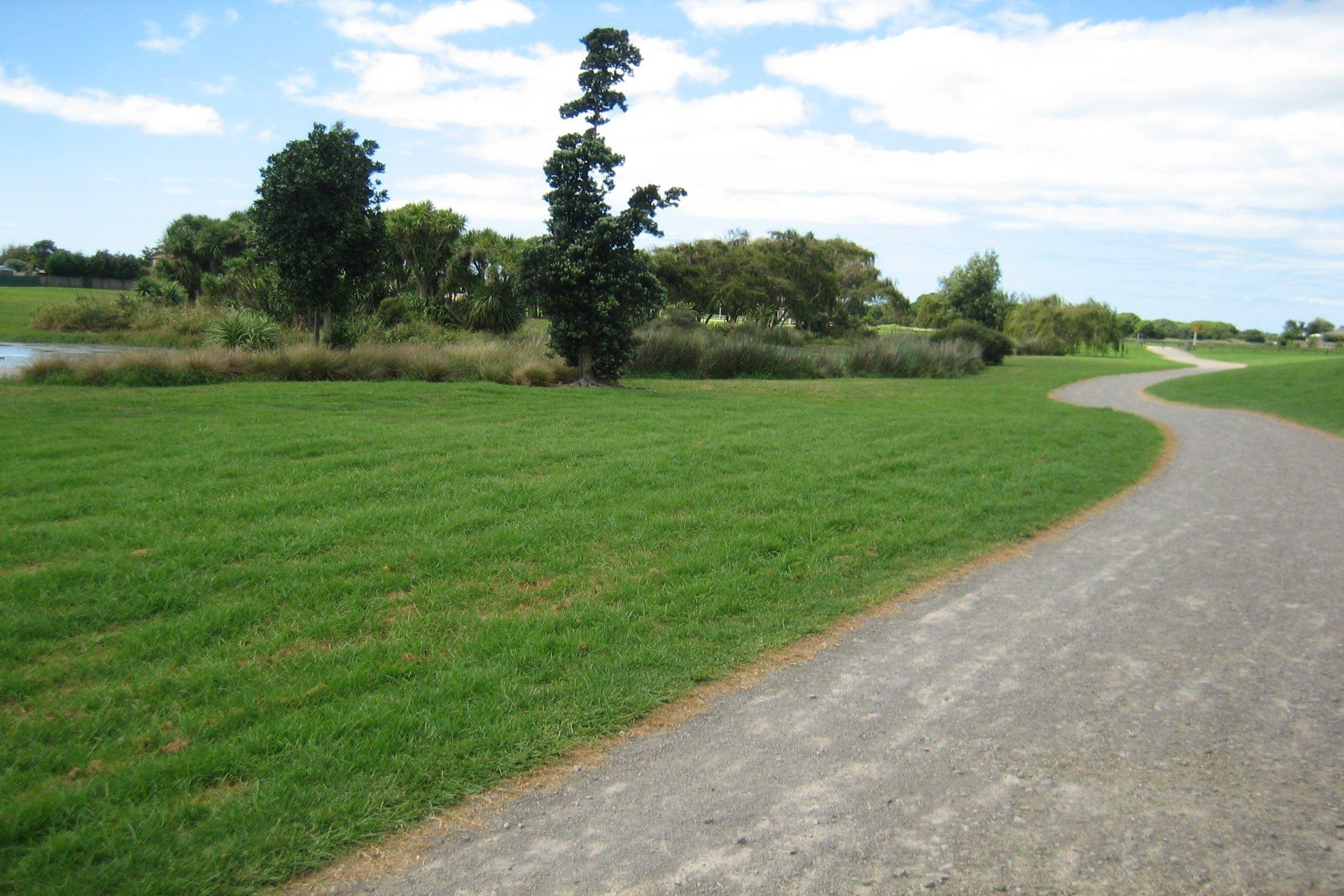 Papamoa Walkways Reserve
