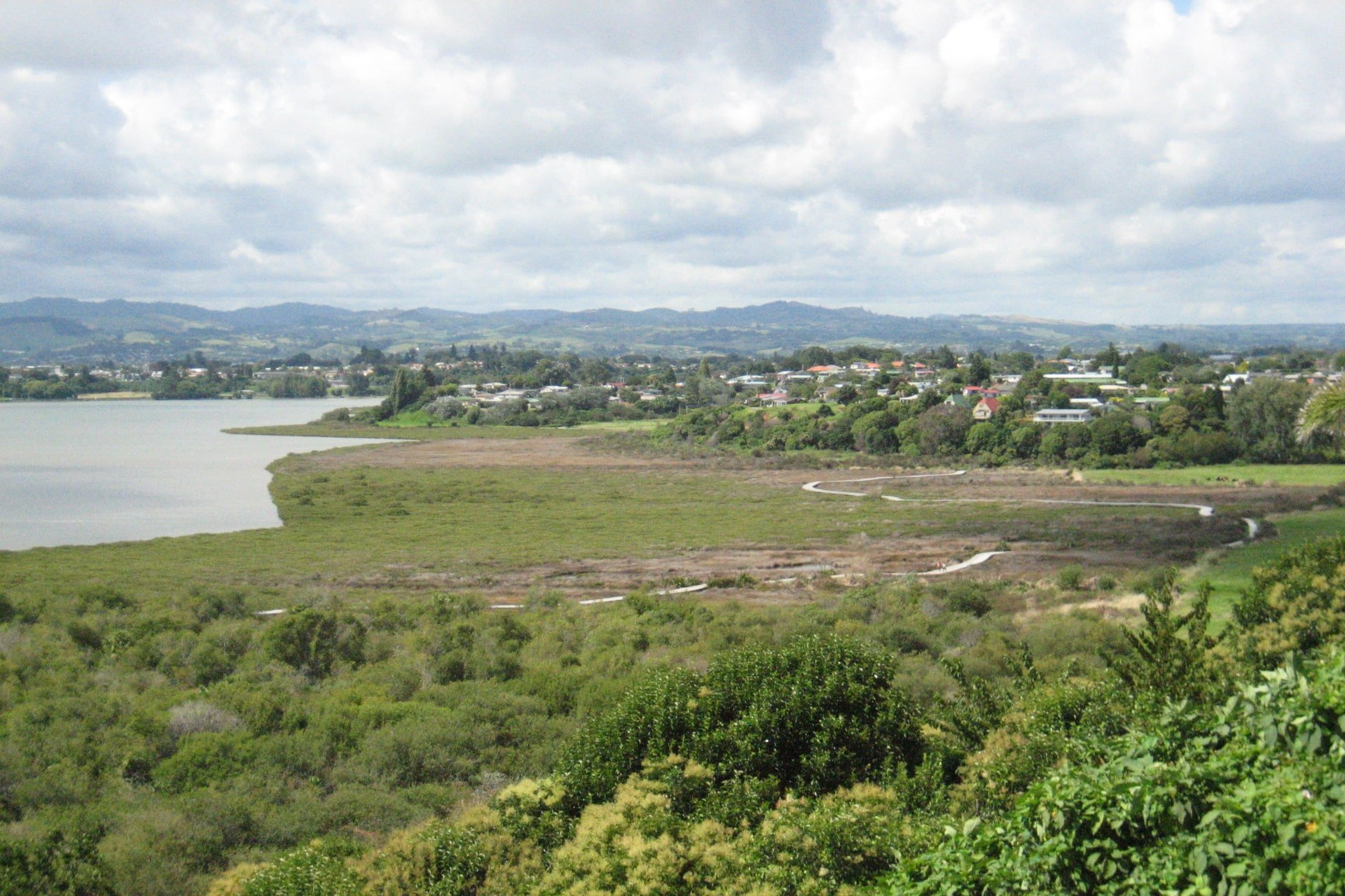 Waikareao Estuary Walking Loop