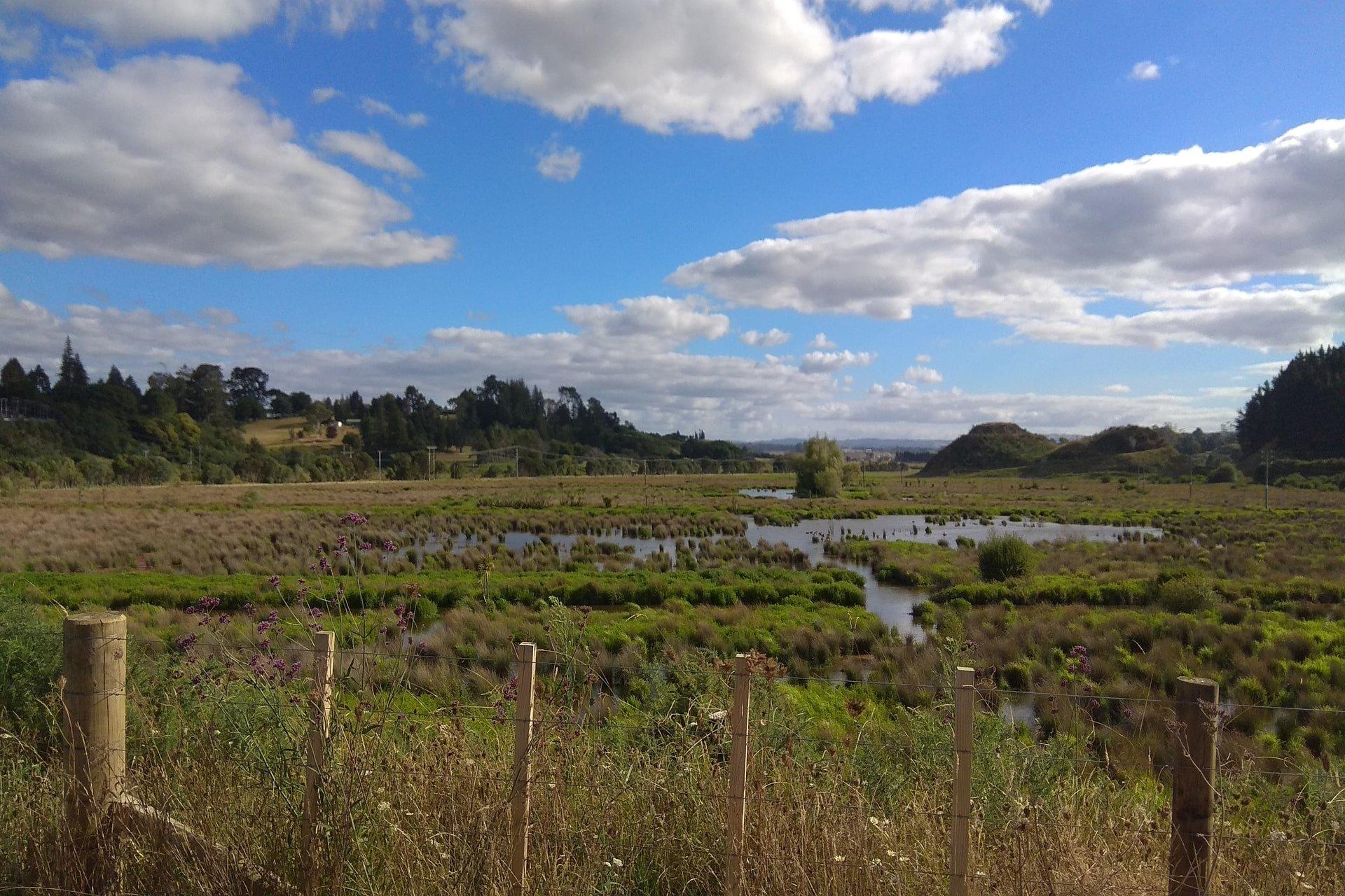 Kopurererua Valley Reserve