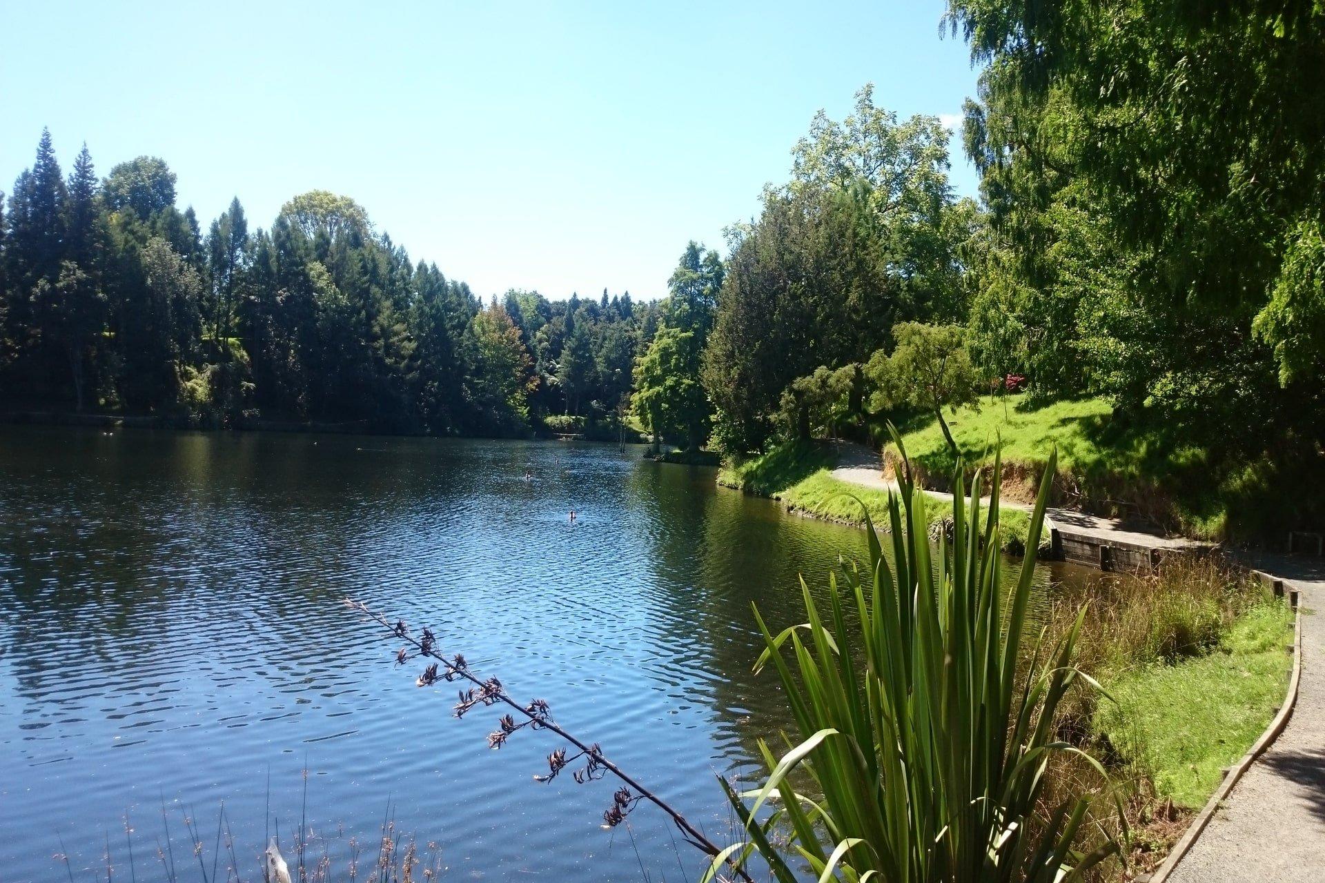 Lake-Mclaren