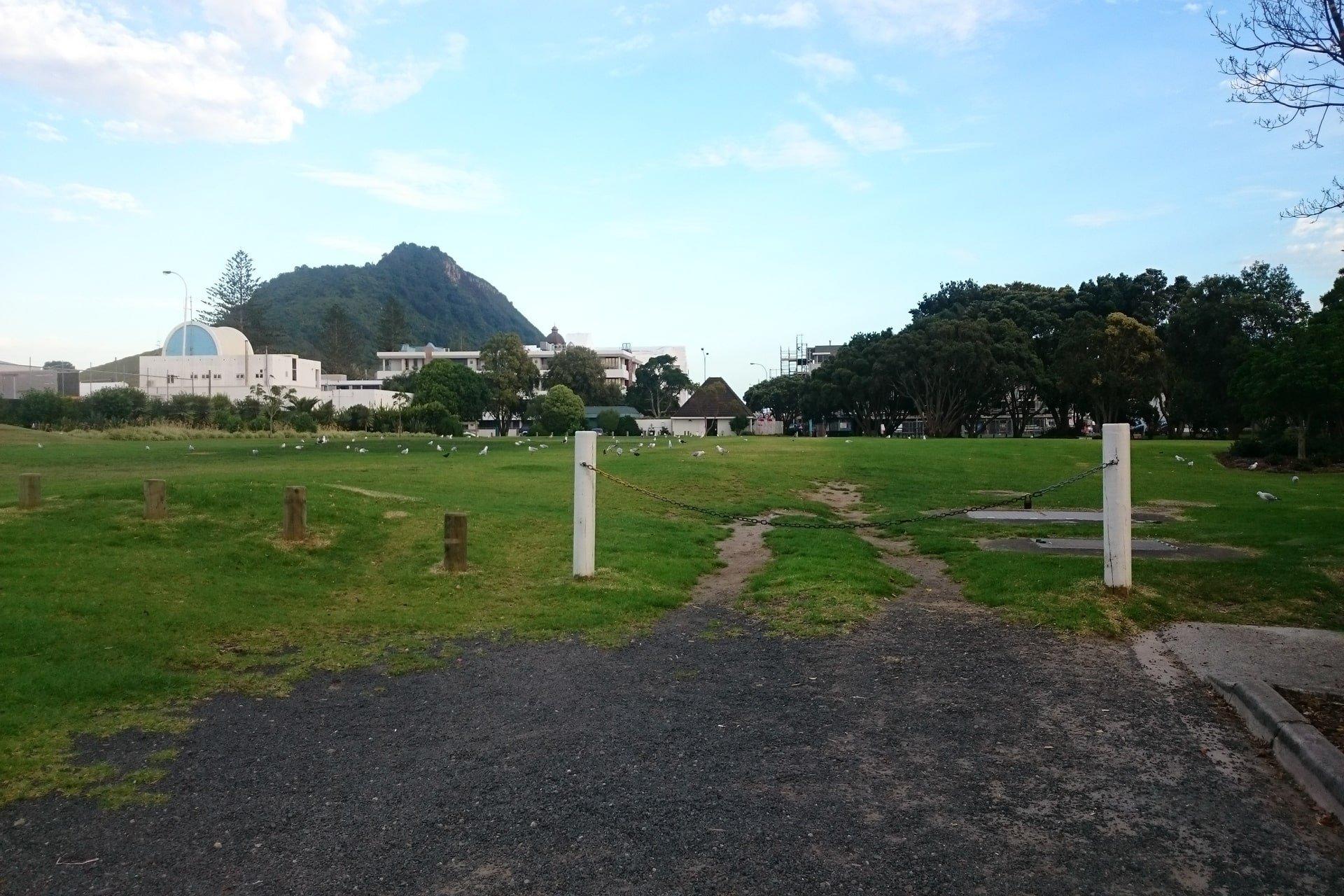 coronation-park-back