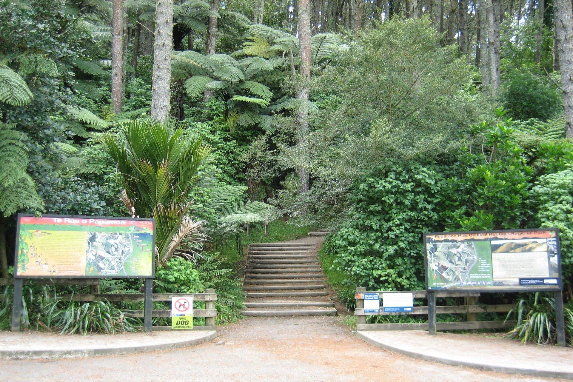 Papamoa-hills-tauranga