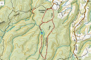 Topograhic image of walking tracks in Aongatete