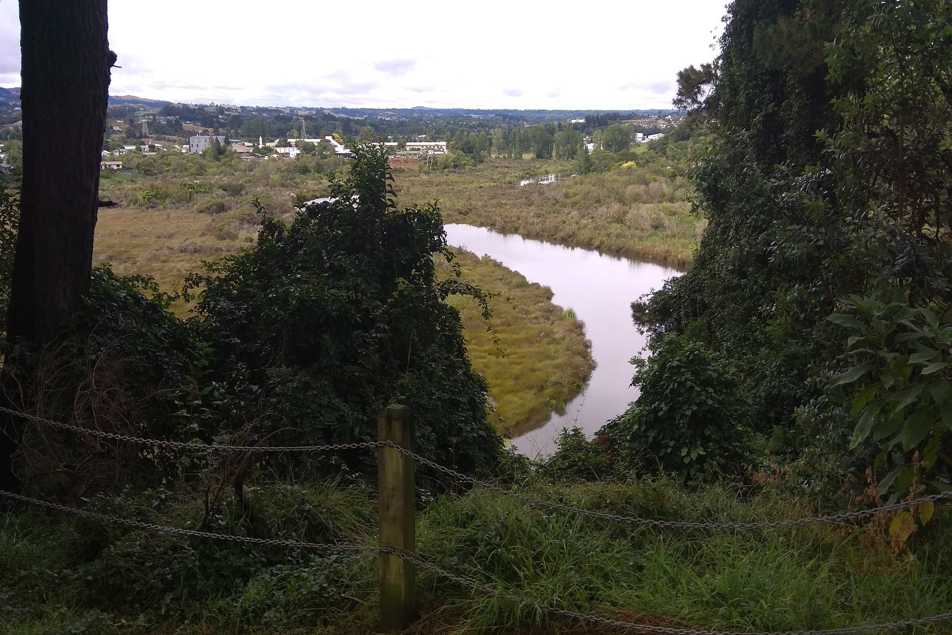 View-from-Yatton-walking-track
