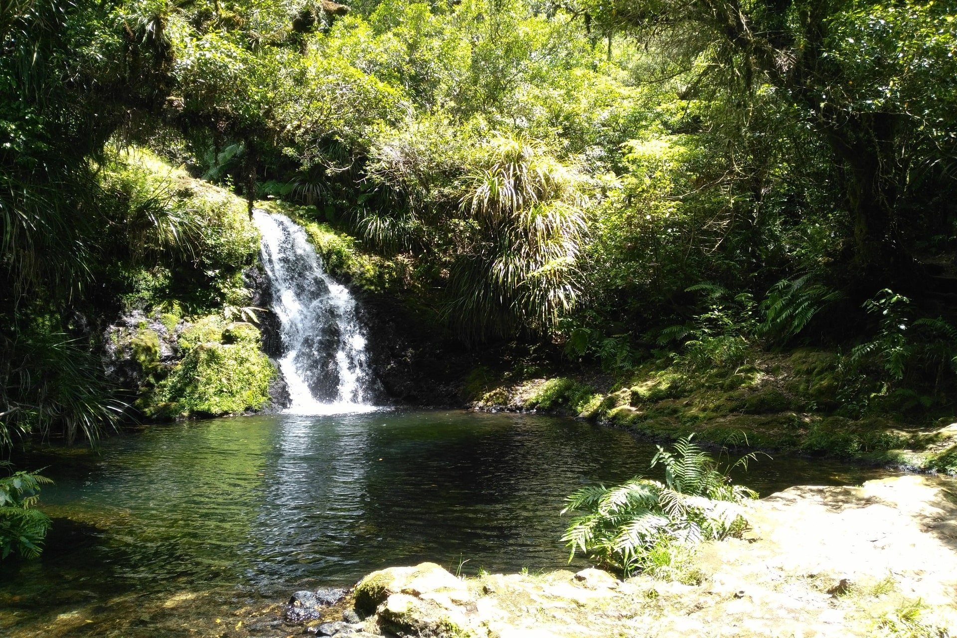 beautiful-whataroa-falls-and-water-holr