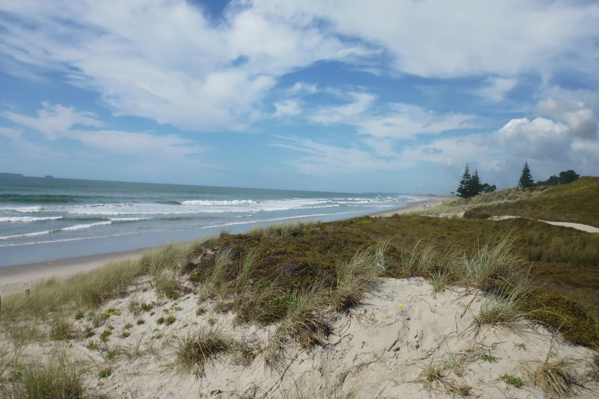papamoa-beach-from-sand-dunes