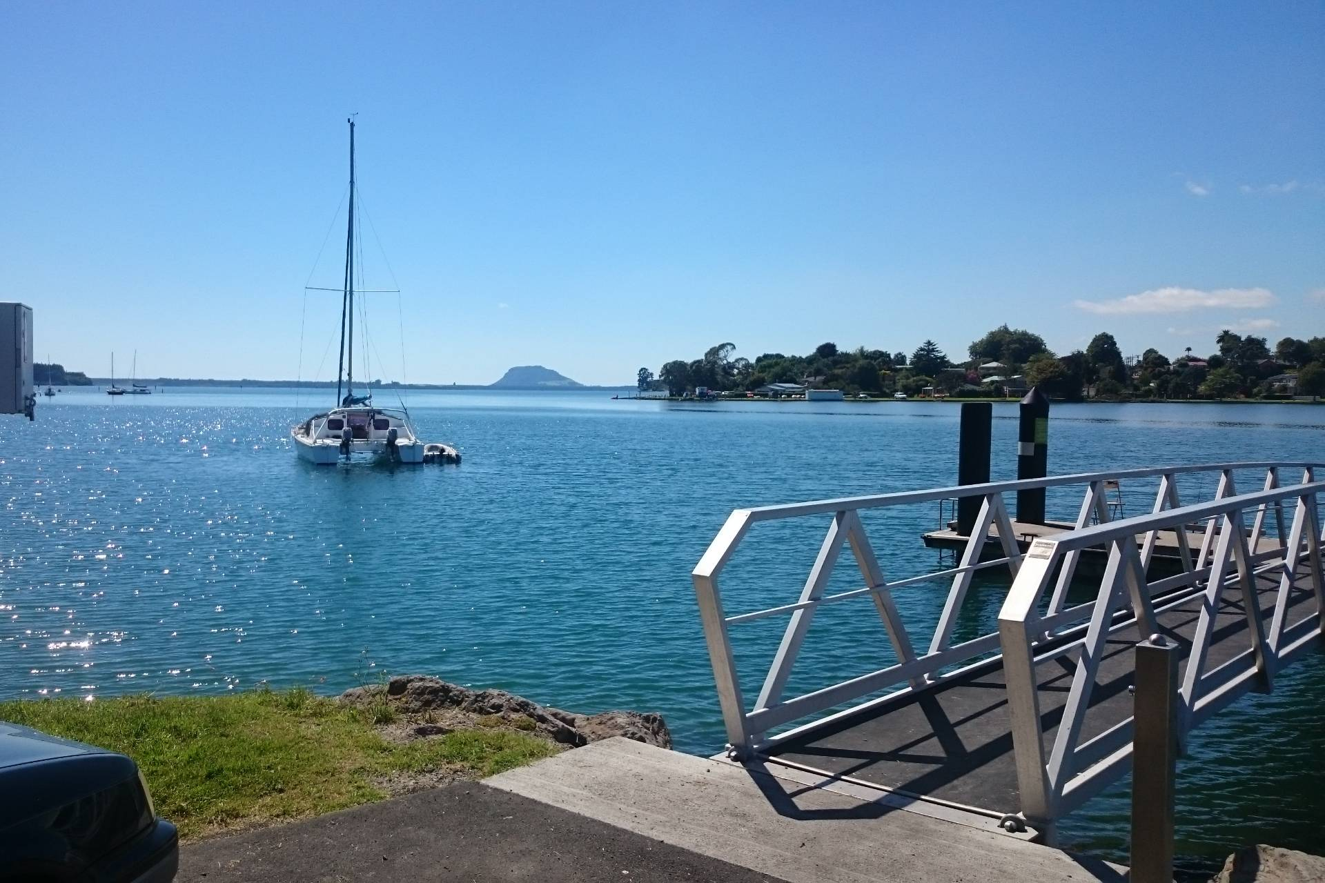 plummers-point-fishing-spot-tauranga