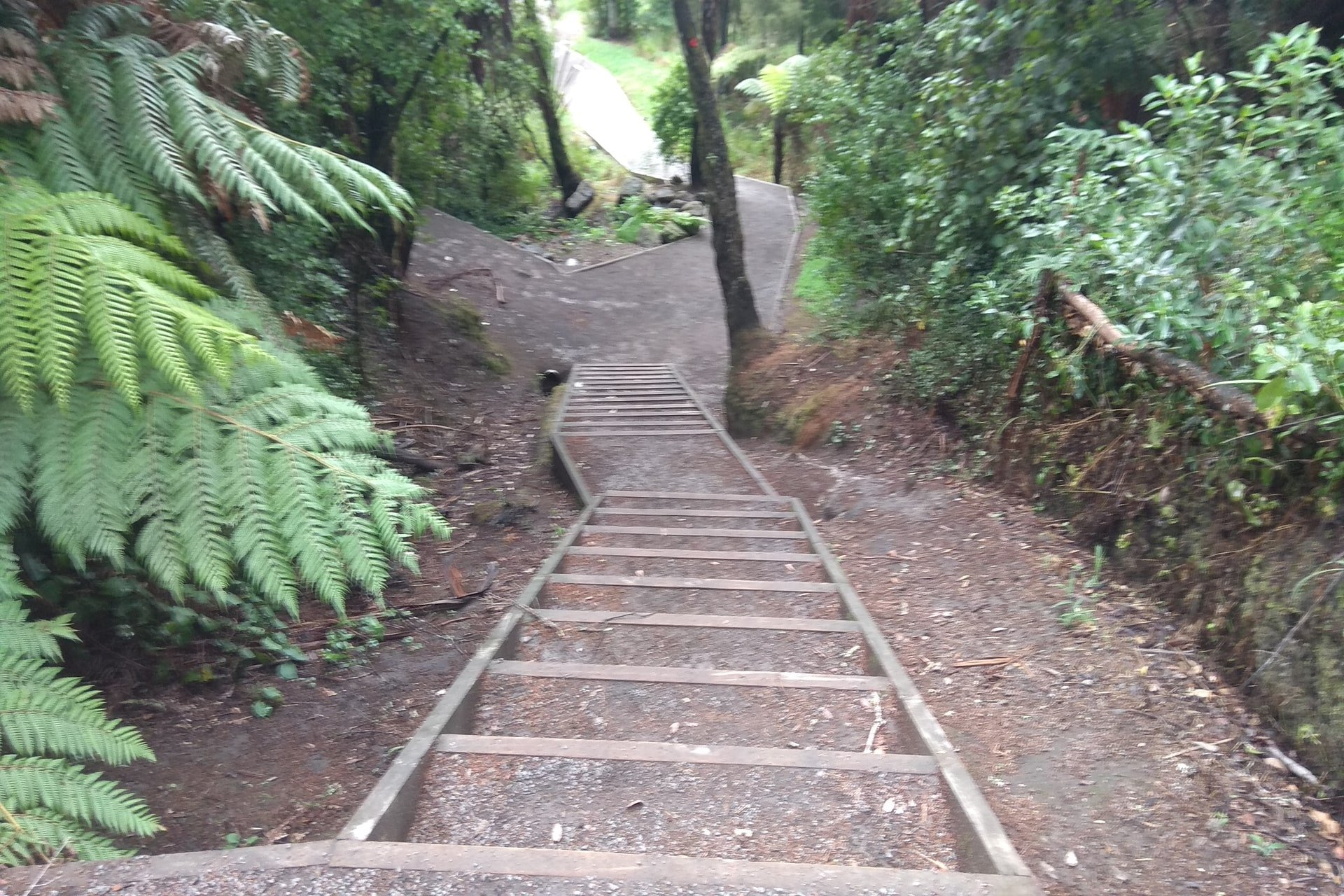 stairs-walking-track-johnson-reserve