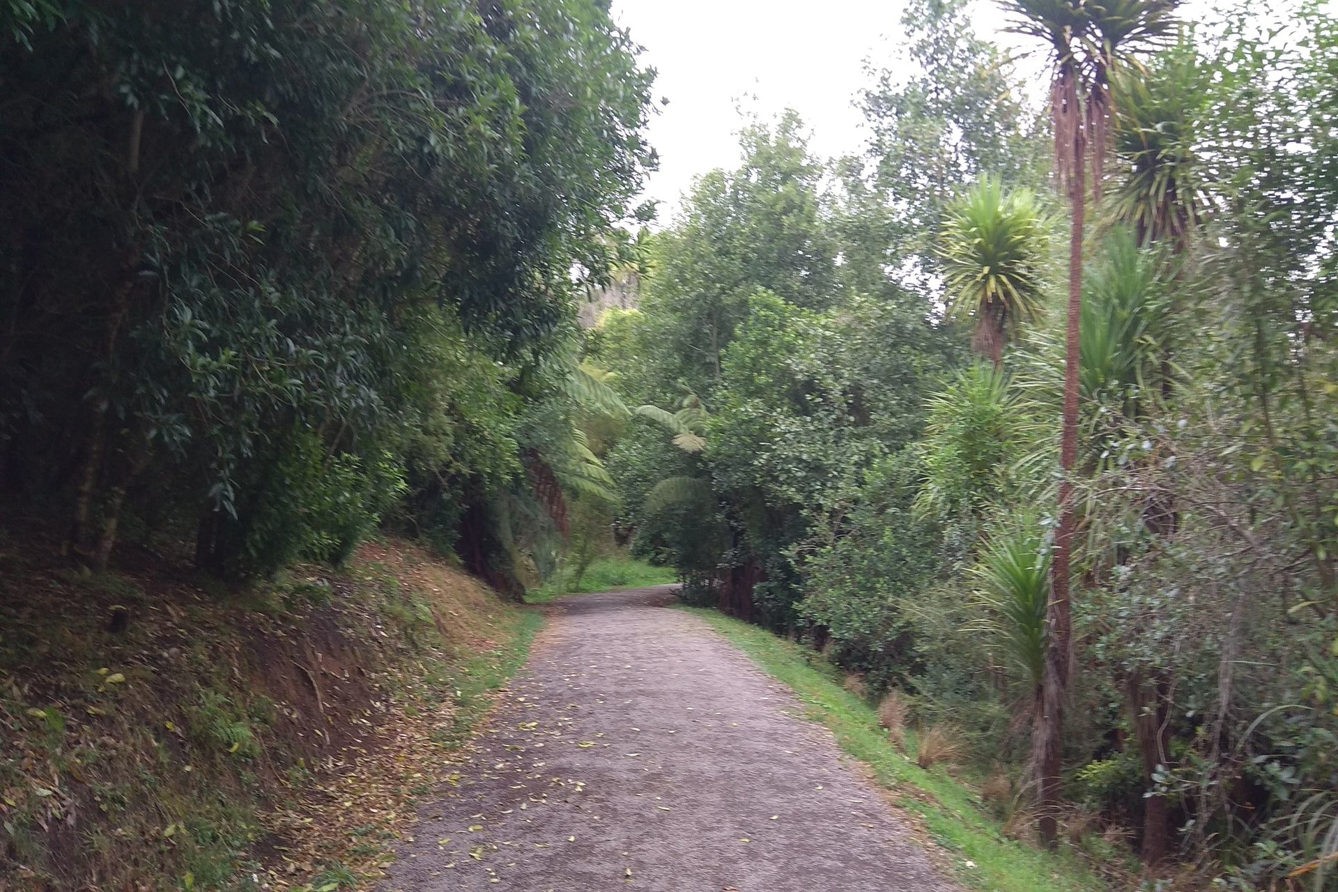 track-johnson-reserve